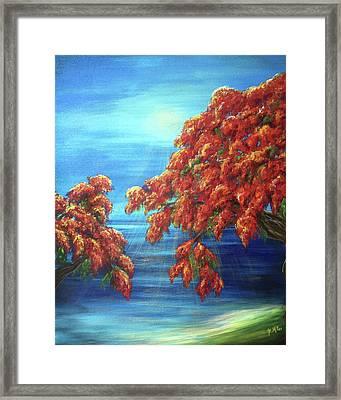 Golden Flame Tree Framed Print
