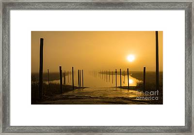 Golden Fog On The Nissequogue Framed Print