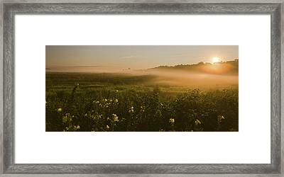 Golden Fog Sunrise At The Refuge Framed Print