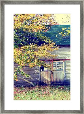 Golden Fall Foliage  Framed Print by JAMART Photography