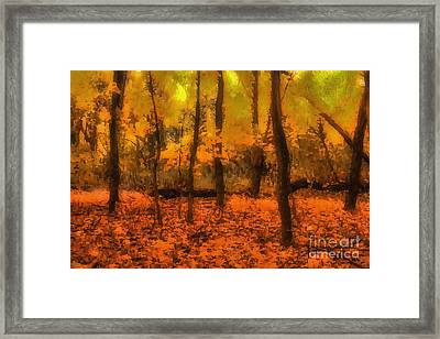 Golden Forest Framed Print by Jeff Breiman