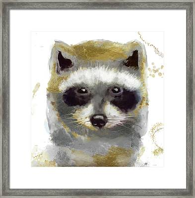 Golden Forest Raccoon  Framed Print