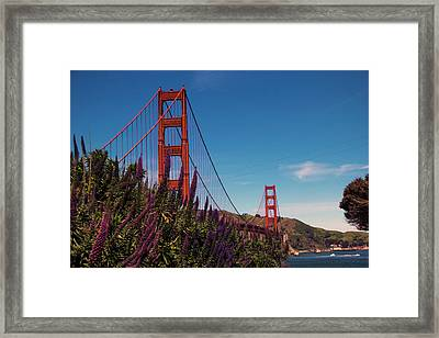 Golden Gate  Framed Print by Brendan Quinn