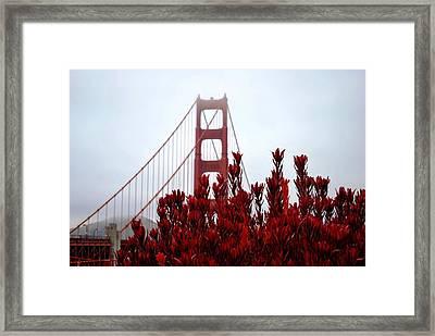 Golden Gate Bridge Red Flowers Framed Print