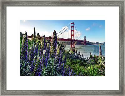 Golden Gate Flowers Framed Print