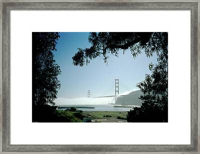 Golden Gate Fog  Framed Print