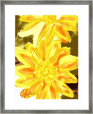 Golden Gerbers Framed Print
