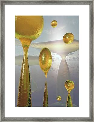 Golden Globs Framed Print by Richard Rizzo