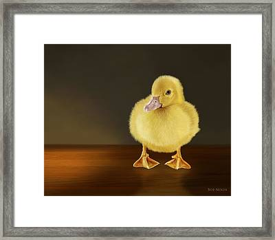 Golden Glow Framed Print by Bob Nolin