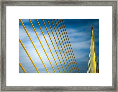 Golden Glow Of Tampa Framed Print by Karen Wiles