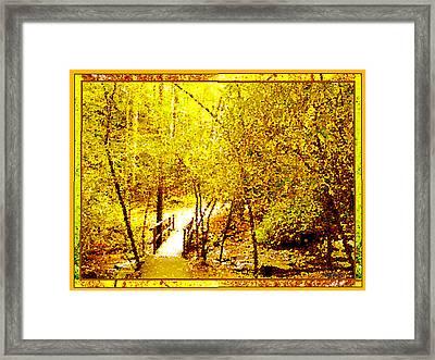 Golden Glow Framed Print by Seth Weaver