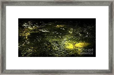 Framed Print featuring the photograph Golden Glow by Tatsuya Atarashi