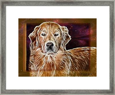 Golden Glowing Retriever Framed Print by EricaMaxine  Price