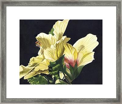 Golden Hibiscus Framed Print