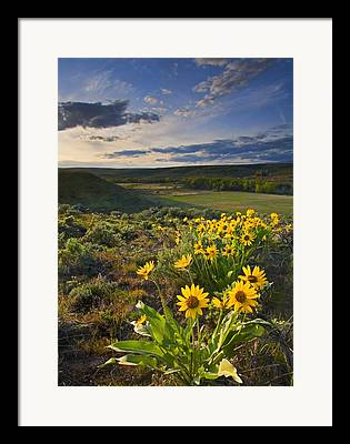Yakima Valley Framed Prints