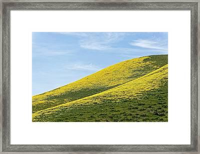 Golden Hills Of California Framed Print
