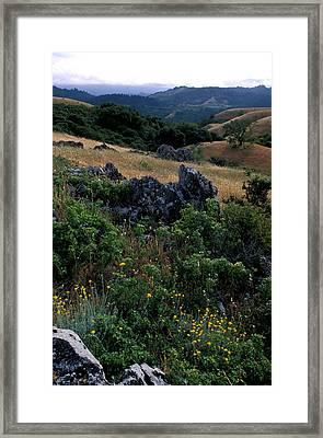 Golden Hills Of Summer Framed Print by Kathy Yates