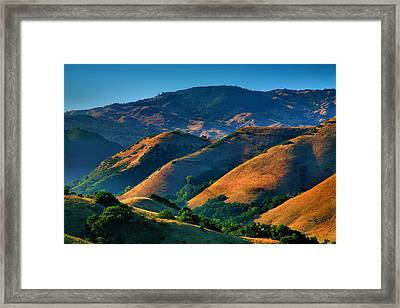 Golden Hills Framed Print by Steven Ainsworth