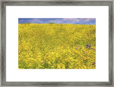 Framed Print featuring the photograph Golden Hillside by Marc Crumpler