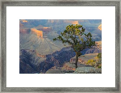 Framed Print featuring the photograph Golden Hour At Pima Point by Beverly Parks