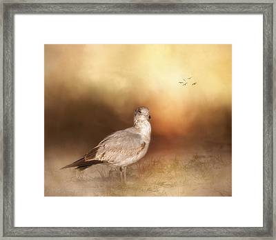 Golden Hour At The Beach Framed Print