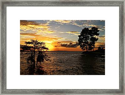Golden Hour At The Lake Framed Print by Judy Vincent