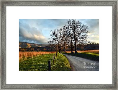 Golden Hour In The Cove Framed Print by Debbie Green