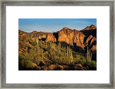 Framed Print featuring the photograph Golden Hour On Saguaro Hill  by Saija Lehtonen