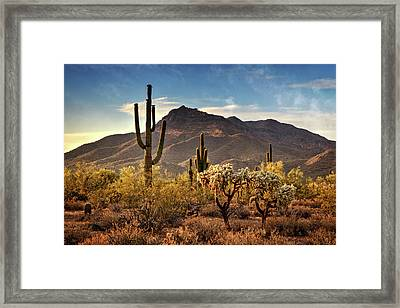 Framed Print featuring the photograph Golden Hour On Usery Mountain  by Saija Lehtonen