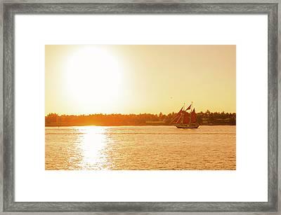 Golden Hour Sailing Ship Framed Print