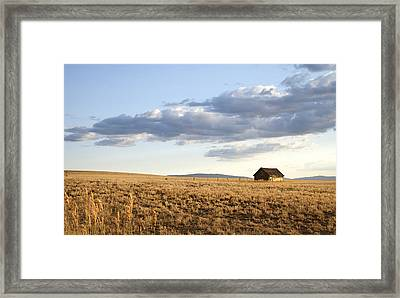 Golden Hours On The Prairies Framed Print by Theresa Tahara