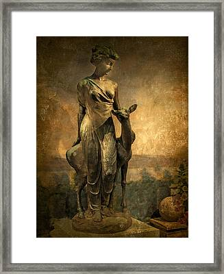 Golden Lady Framed Print