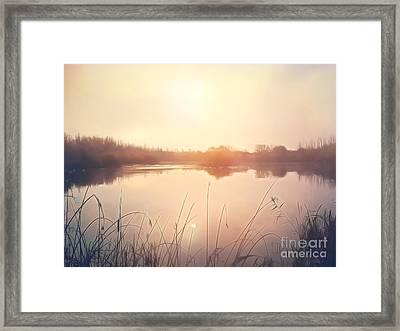 Golden Lake Framed Print by Pixel Chimp