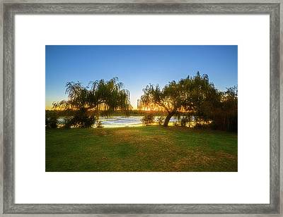 Framed Print featuring the photograph Golden Lake, Yanchep National Park by Dave Catley