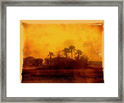Golden Land Framed Print by Susanne Van Hulst