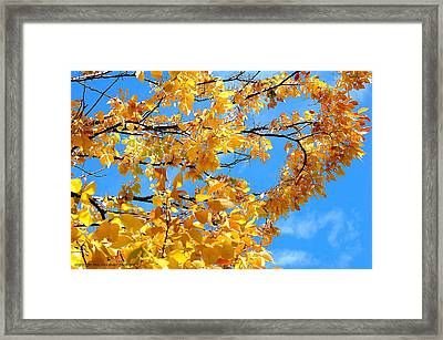 Golden Leaves Ll Framed Print