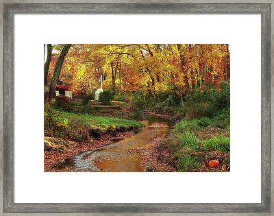 Golden Leaves Of Autumn Framed Print by Mikki Cucuzzo