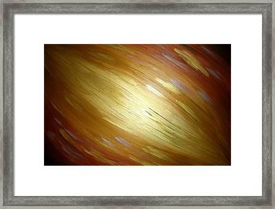 Golden Light Framed Print by Daniel Lafferty