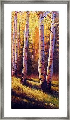 Golden Light Framed Print by David G Paul