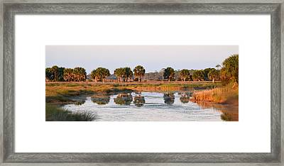 Golden Light On The St. Marks Marshes Framed Print
