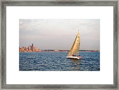 Golden Light Sails Framed Print by Tom Dowd
