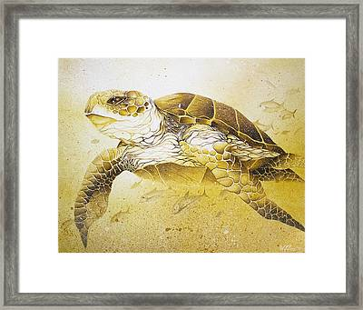 Golden Loggerhead Framed Print