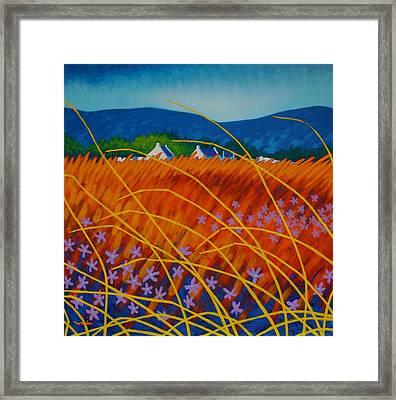 Golden Meadow Framed Print by John  Nolan