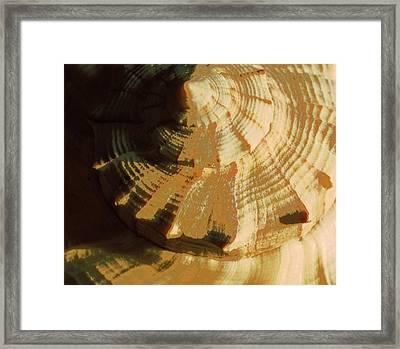 Golden Mean I Framed Print