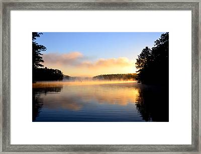 Golden Mist Framed Print