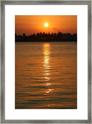 Framed Print featuring the photograph Golden Moment by Diane Merkle