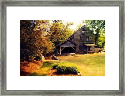 Golden Morning At Yates Mill Framed Print by Mylinda Revell