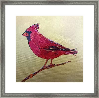 Golden Morning Cardinal Framed Print