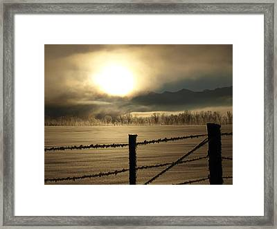 Golden Morning Framed Print