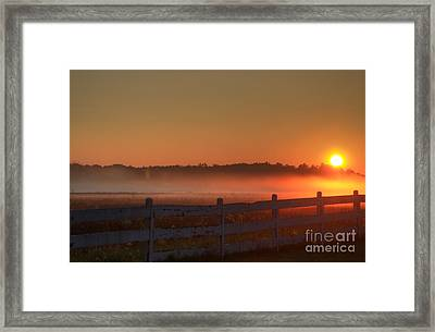 Golden Morning Framed Print by Robert Pearson